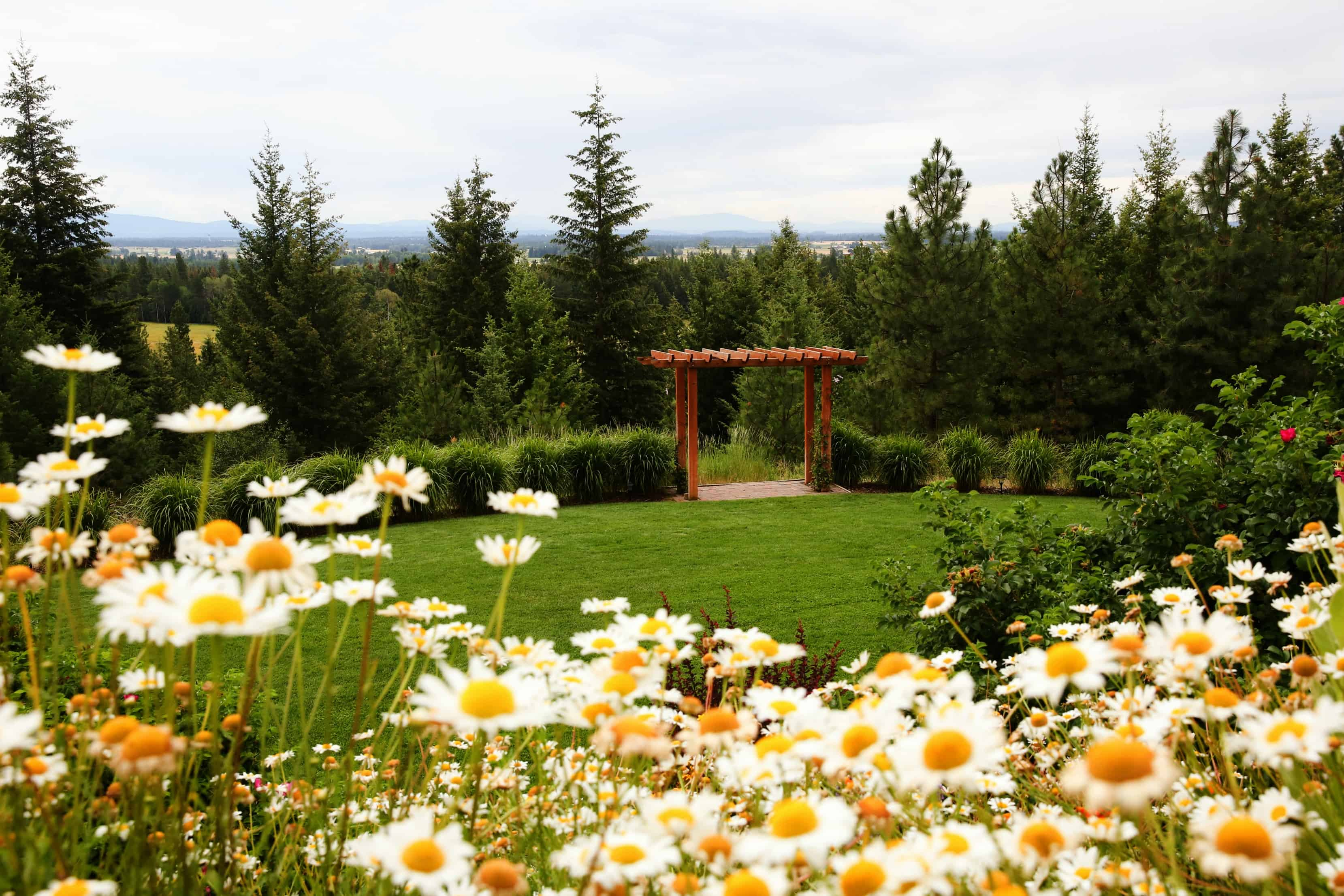 how to start and run a wedding venue in your own backyard