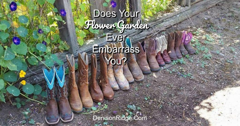 Does Your Flower Garden Ever Embarrass You?