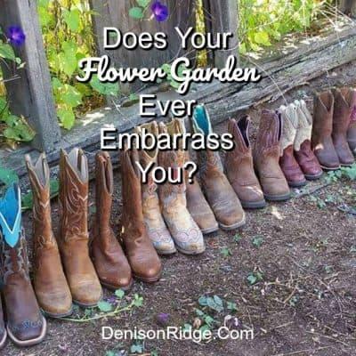Does Your Flower Garden Ever Embarrass You?