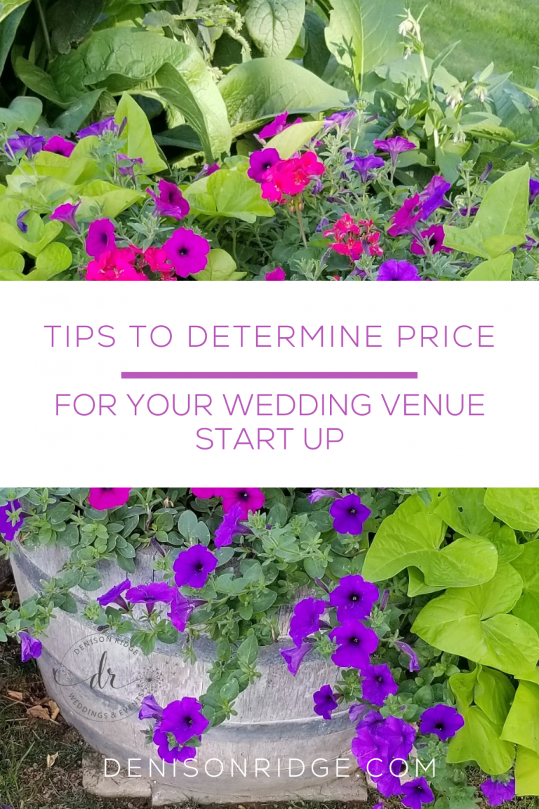 Tips to Determine Price for Your Wedding Venue Start Up